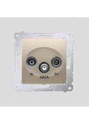 Gniazdo R-TV-DATA złoty mat
